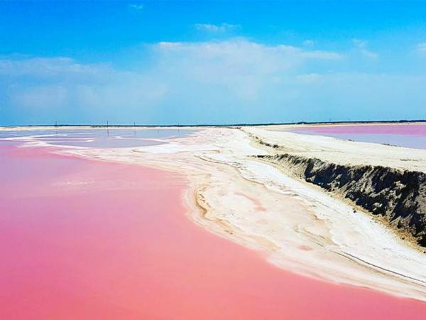 粉紅湖-觀賞火烈鳥